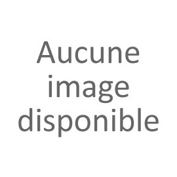 AH17 FIGURINE OISEAU BOIS ROUG